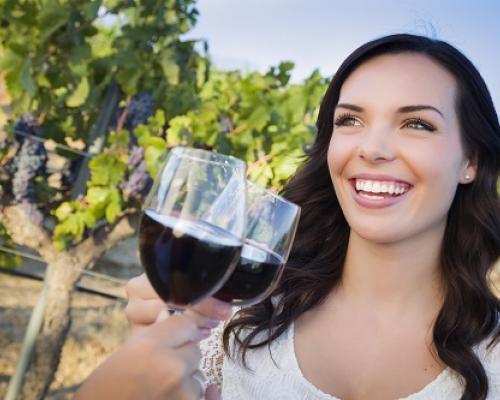 L'art de la dégustation des vins de Provence